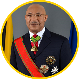 His Excellency Sir Patrick Allen, ON, GCMG, CD, KSt.J